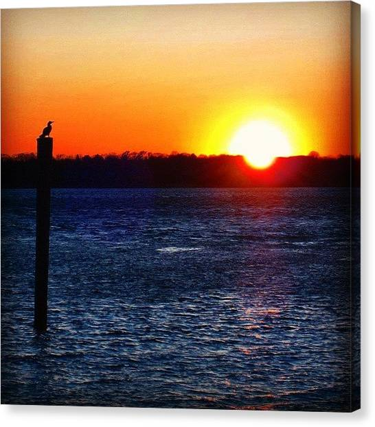 Hammerhead Sharks Canvas Print - Sunset At Jersey Shore by Lauren Fitzpatrick