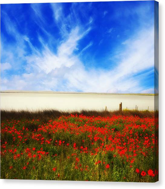 Remember Summer Canvas Print