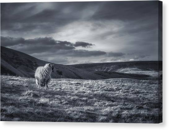 Peak District Canvas Print - Remembering by Chris Fletcher