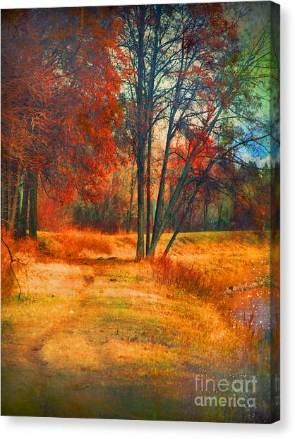 Penticton Canvas Print - Remembering The Places I Have Been by Tara Turner