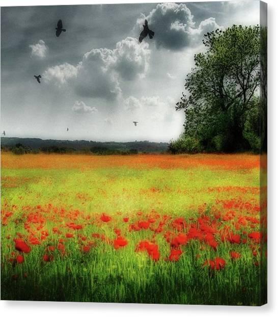 Canvas Print - Remember #rememberanceday #remember by John Edwards