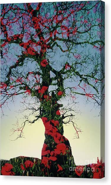 Fallen Tree Canvas Print - Remembrance Tree by Janet Burdon