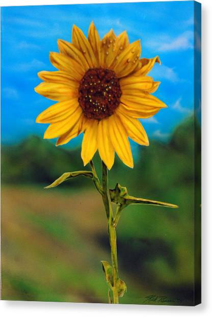 Reminiscing Glorious Summer Days Canvas Print by Rick Primeau