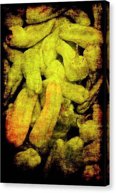 Renaissance Green Peppers Canvas Print