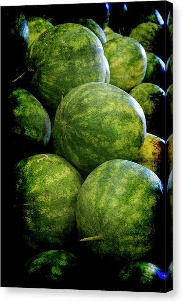 Renaissance Green Watermelon Canvas Print