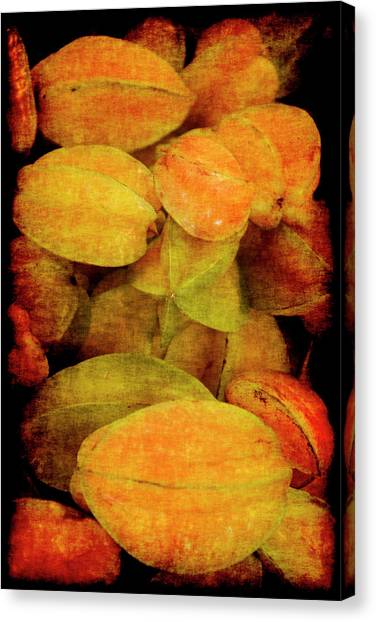 Renaissance Star Fruit Canvas Print