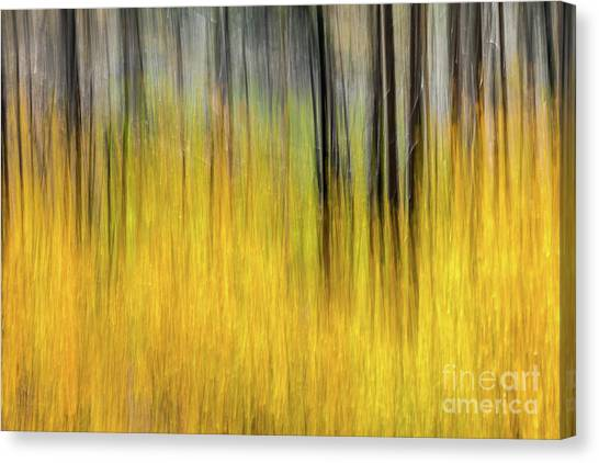 Renewal Abstract Art By Kaylyn Franks Canvas Print