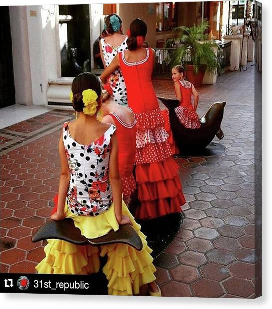 Flamenco Canvas Print - #repost @31st_republic by Mary Alexandra Stiefvater
