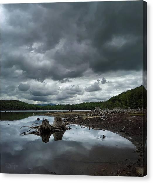 Mud Canvas Print - Reservoir Logs by Jerry LoFaro