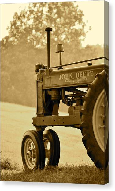 Resting In Sepia Canvas Print