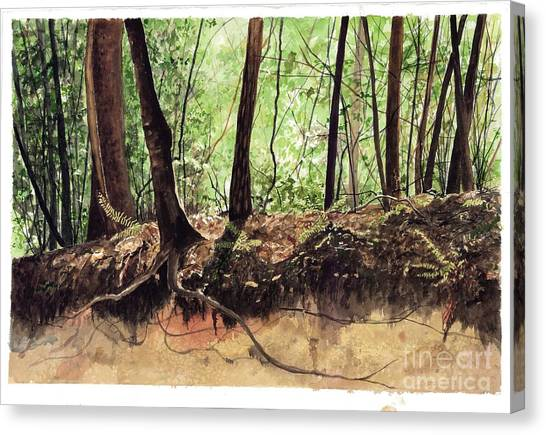 Returning To Your Roots Canvas Print by Carla Dabney