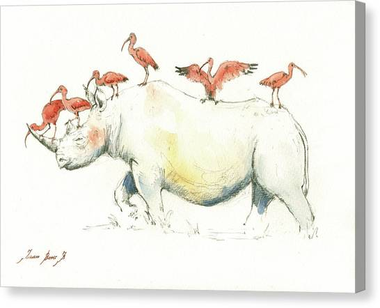 Rhinos Canvas Print - Rhino And Ibis by Juan Bosco