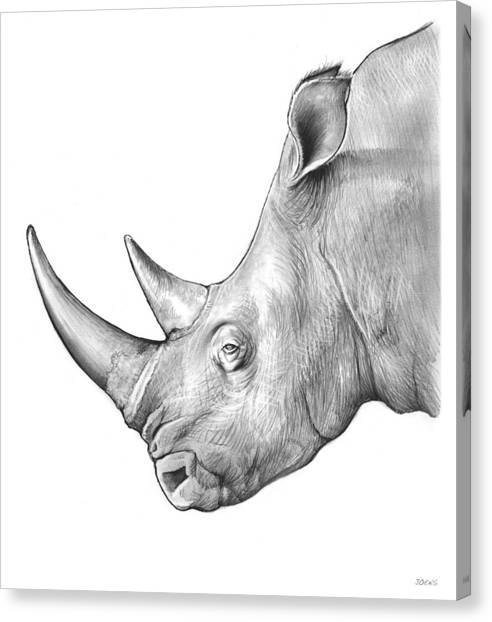 Rhinos Canvas Print - Rhino by Greg Joens