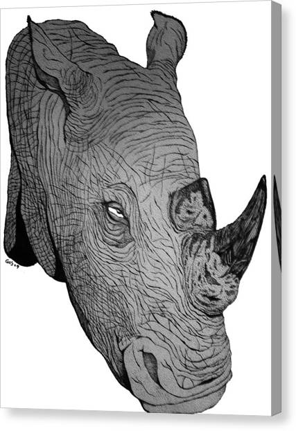 Rhino Canvas Print by Nick Gustafson
