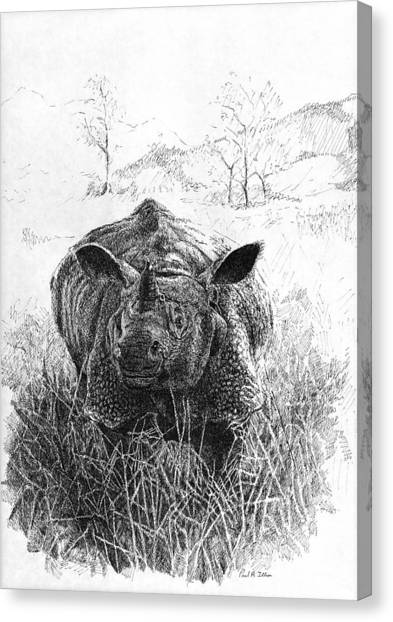 Rhino Canvas Print by Paul Illian