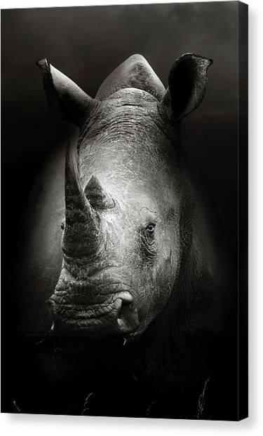 Rhino Canvas Print - Rhinoceros Portrait by Johan Swanepoel