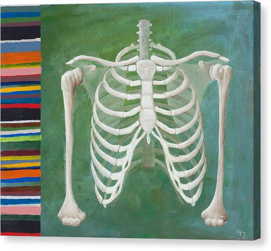 Skeletons Canvas Print - Ribbing  by Sara Young