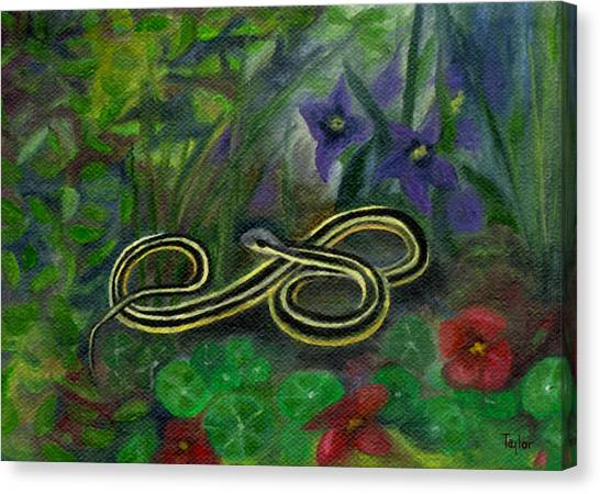 Ribbon Snake Canvas Print