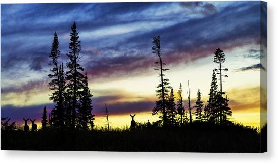 Fawns Canvas Print - Ridge Sihouette by Chad Dutson
