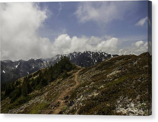 Ridge Walking In The Olympic Mountains Canvas Print