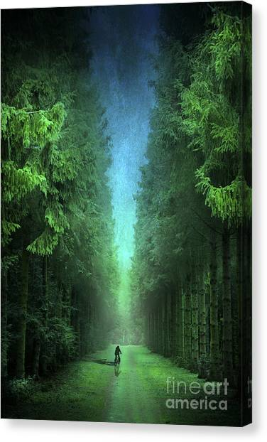 Woodland Canvas Print - Riding Away by Svetlana Sewell