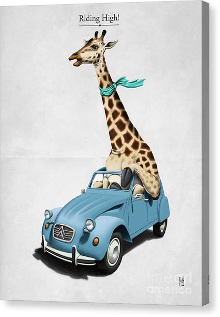 Giraffes Canvas Print - Riding High by Rob Snow