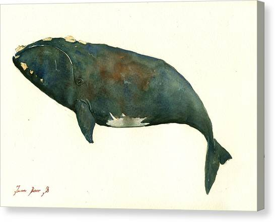 Blue Whales Canvas Print - Right Whale Painting by Juan  Bosco