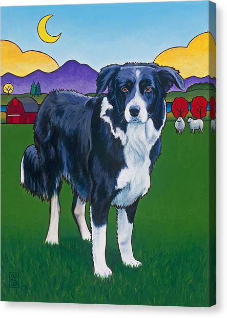 Border Collies Canvas Print - Riley by Stacey Neumiller