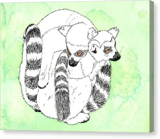 Ring-tailed Lemur Canvas Print - Ring-tailed Lemur Huddle by Michelle Wang