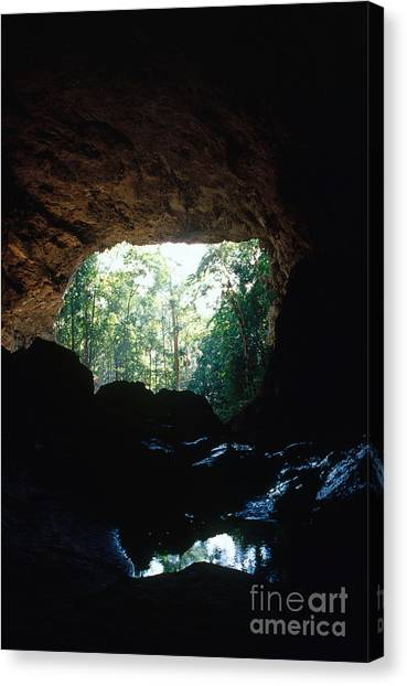 Limestone Caves Canvas Print - Rio Frio Cave by John Kaprielian