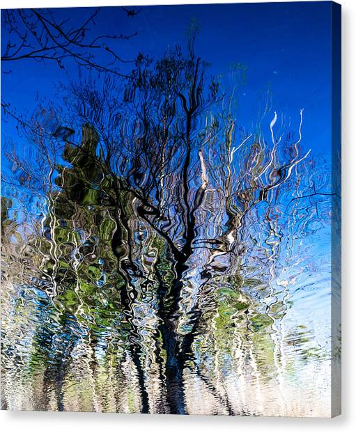 Rippled Reflection Canvas Print
