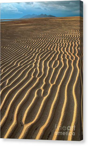 Ripples In Late Sunlight Canvas Print