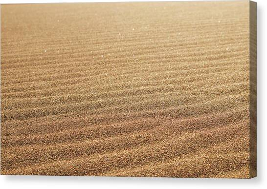 Ripples In The Sand Canvas Print