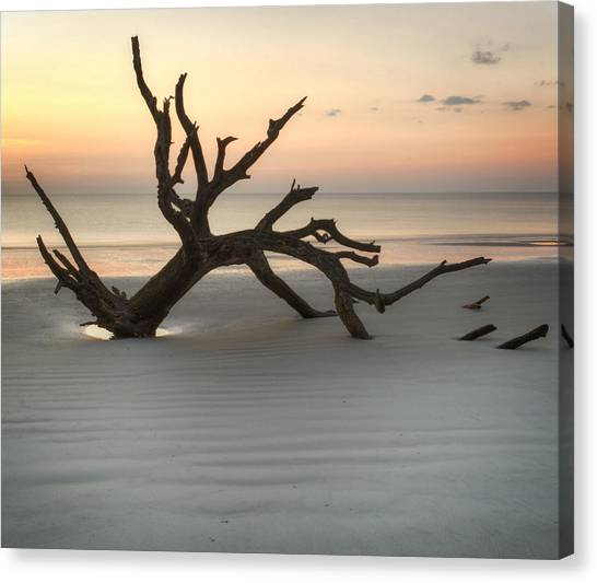 Ripples Of Sand And Driftwood Canvas Print