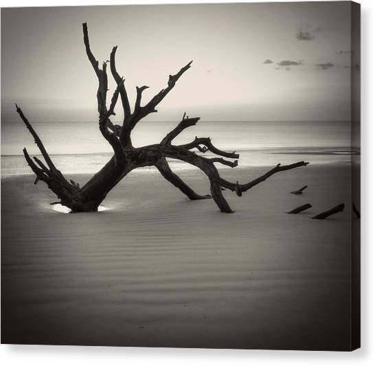 Ripples Of Sand And Driftwood Sepia Canvas Print