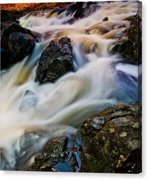 River Dance Canvas Print