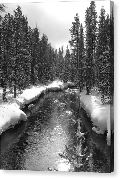 River In Yellowstone Canvas Print