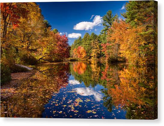 River Mirage Canvas Print