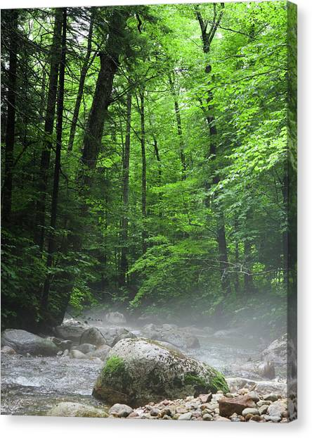 River Mist Canvas Print
