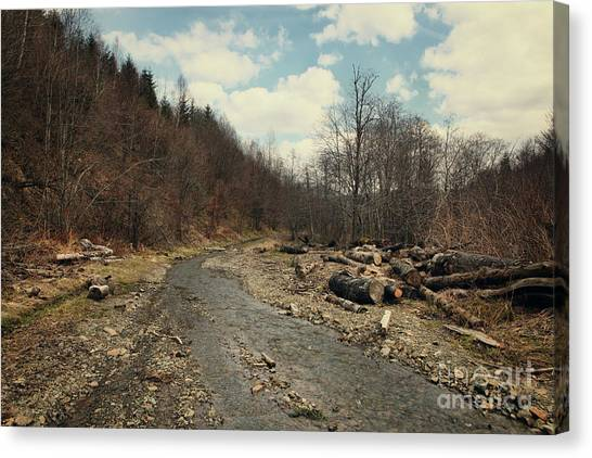 River On The Road Canvas Print by Mykola Romanovsky