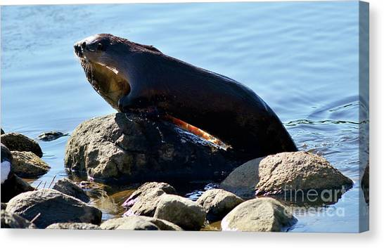 River Otter And Catch Of The Day Canvas Print by Terry Elniski