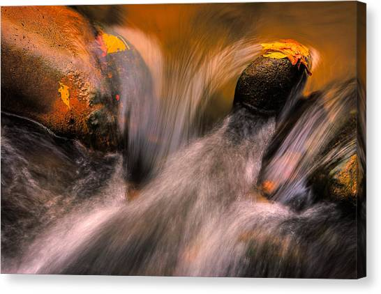 River Rocks, Zion National Park Canvas Print