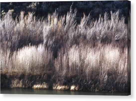 River Sage Canvas Print by Lynard Stroud