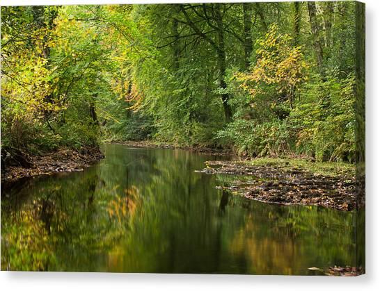 River Teign On Dartmoor Canvas Print