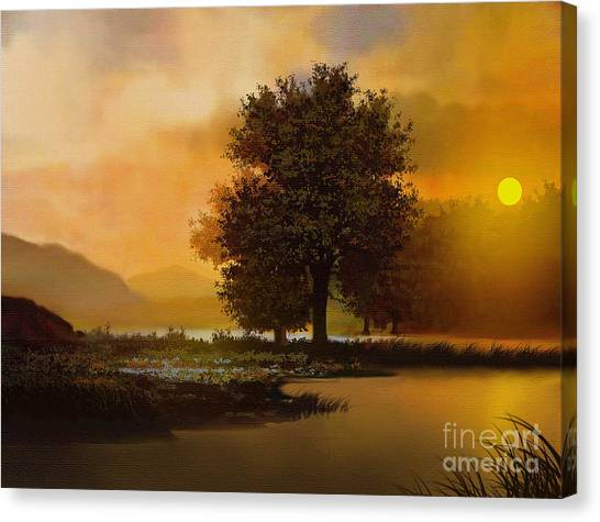 River Tree Canvas Print by Robert Foster