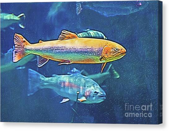 Canvas Print featuring the digital art River Trout by Ray Shiu