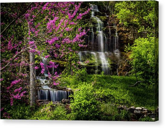 Rivercut Waterfall Canvas Print