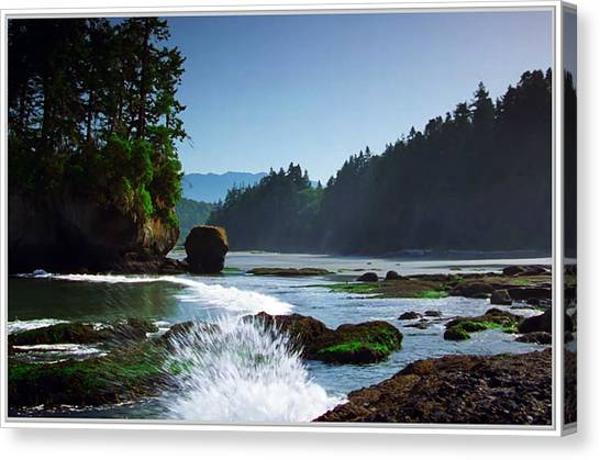 Rivers And Lakes Around Olympic National Park America Canvas Print