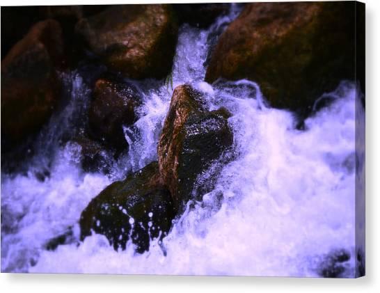 River's Dream Canvas Print