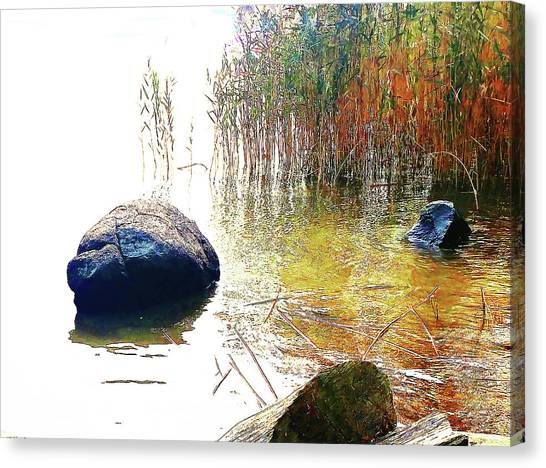 Canvas Print featuring the photograph Riverside Melody by Roger Bester